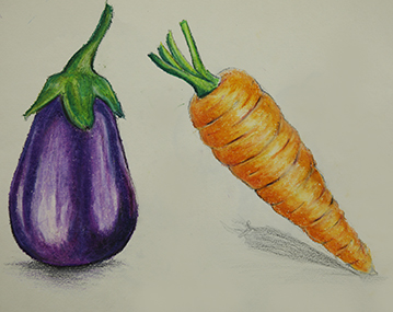 04. Draw Vegetables